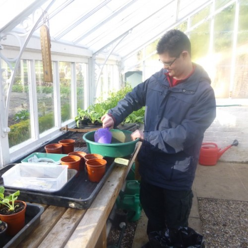 Supported Volunteering & Work Experience Project