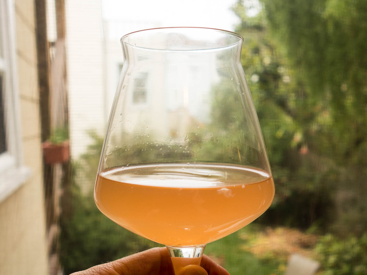 Fast Sour Beer Recipe
