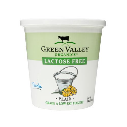 GREEN VALLEY ORGANICS LACTOSE FREE LOW FAT YOGURT PLAIN 6oz