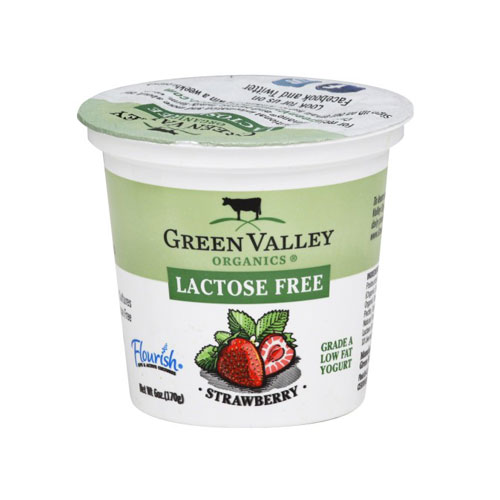 GREEN VALLEY ORGANICS LACTOSE FREE YOGURT STRAWBERRY 6oz