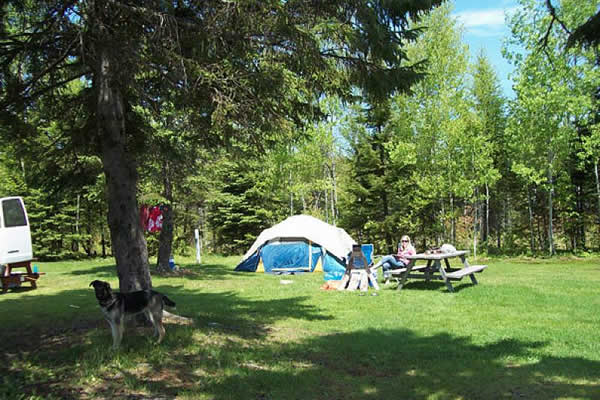 Safe Site Checker >> Campers City RV Resort - Online Reservations