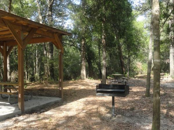 Picture of campground 2