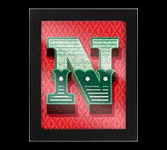 Alphabet Jigsaw N