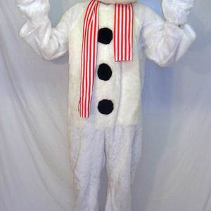 Adult snowman costume