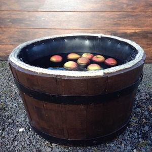 Apple bobbing min