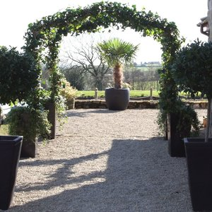 Ivy arch with a matching pair of bay trees