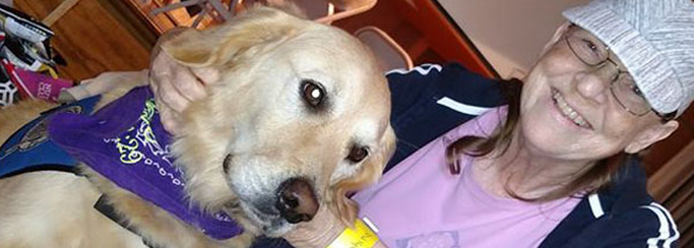 Após tempestade Harvey, moradores do Texas recebem suporte emocional de cães terapeutas