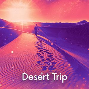 Image Desert Trip Festival