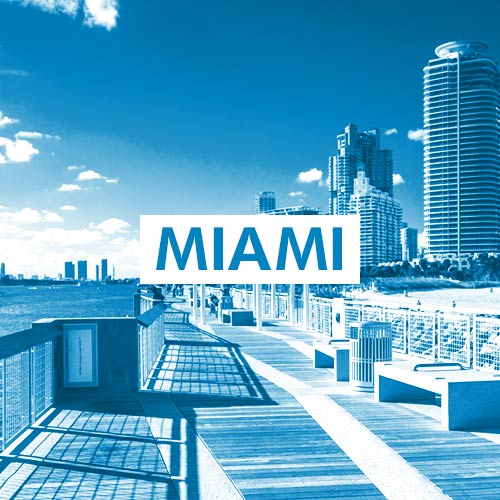 Miami Graphic