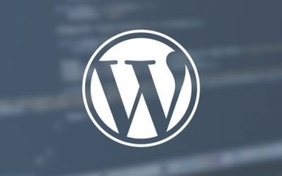 Por que o WordPress?