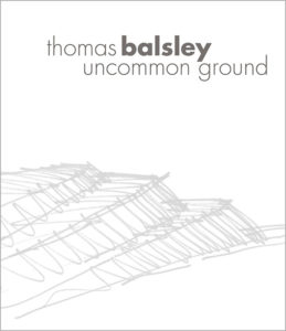Pages from TBA_monograph_English web