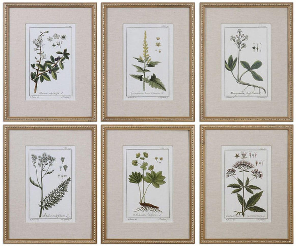 Floral Prints Art