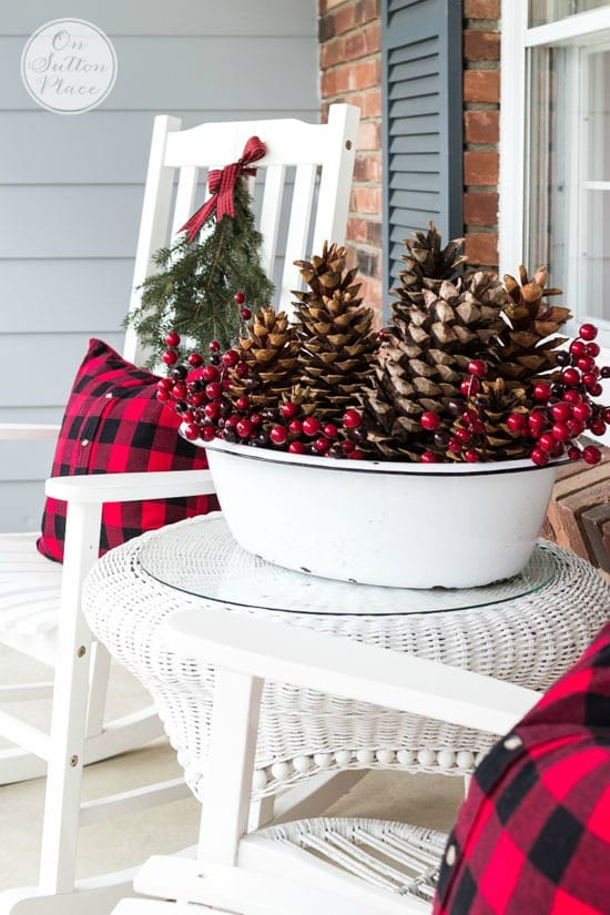 Pinecones and Berry Bowls