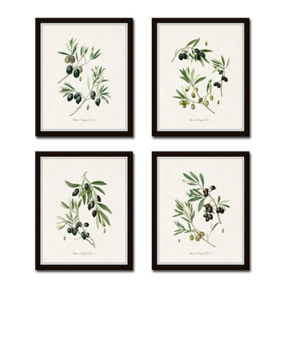Antique Olive Print Set