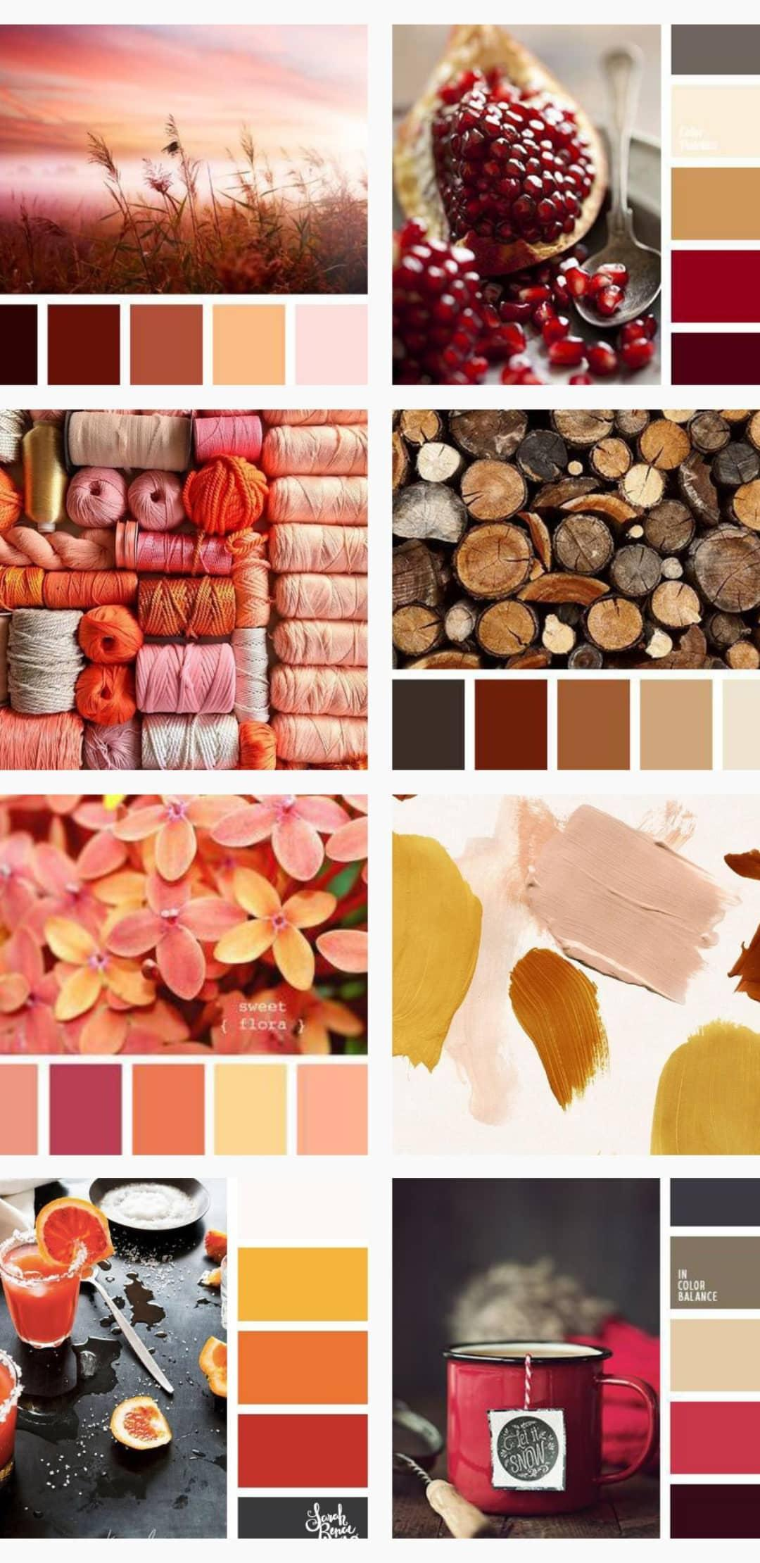 Warm interior design colors