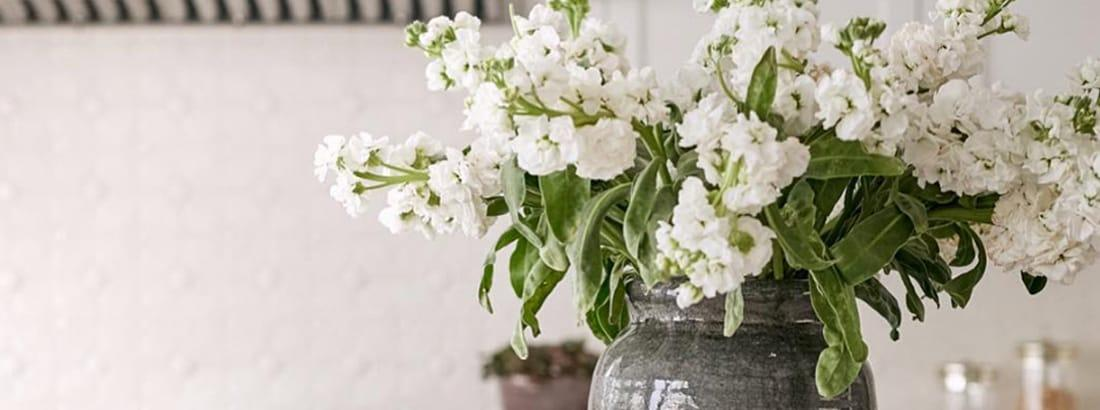 The Top 3 Items Your Home Needs for Spring
