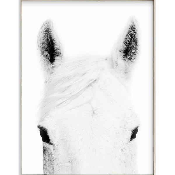 Horseart