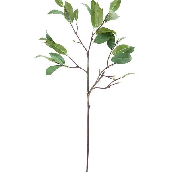 Faux laurel leaf stem 1 960x960