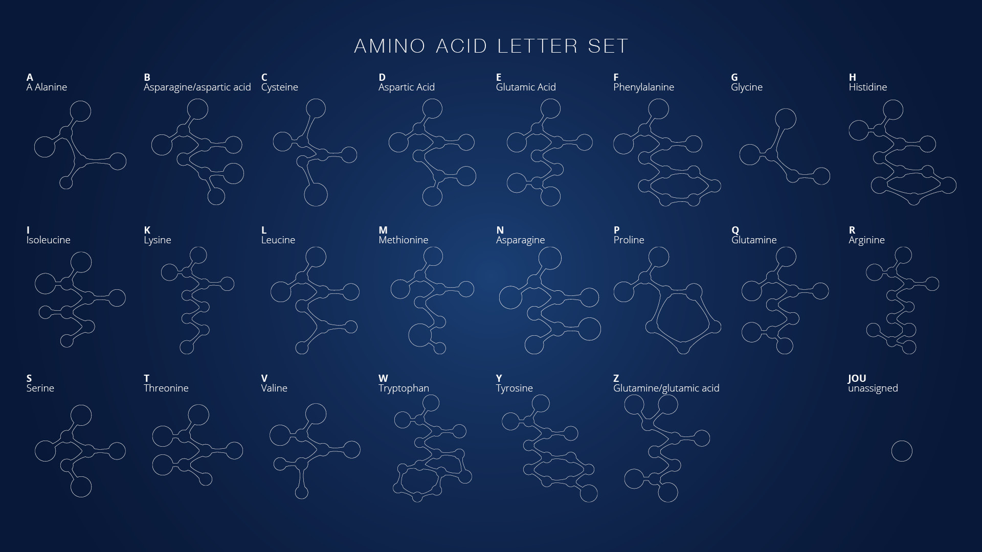 Sunrise: Amino Acid Letters