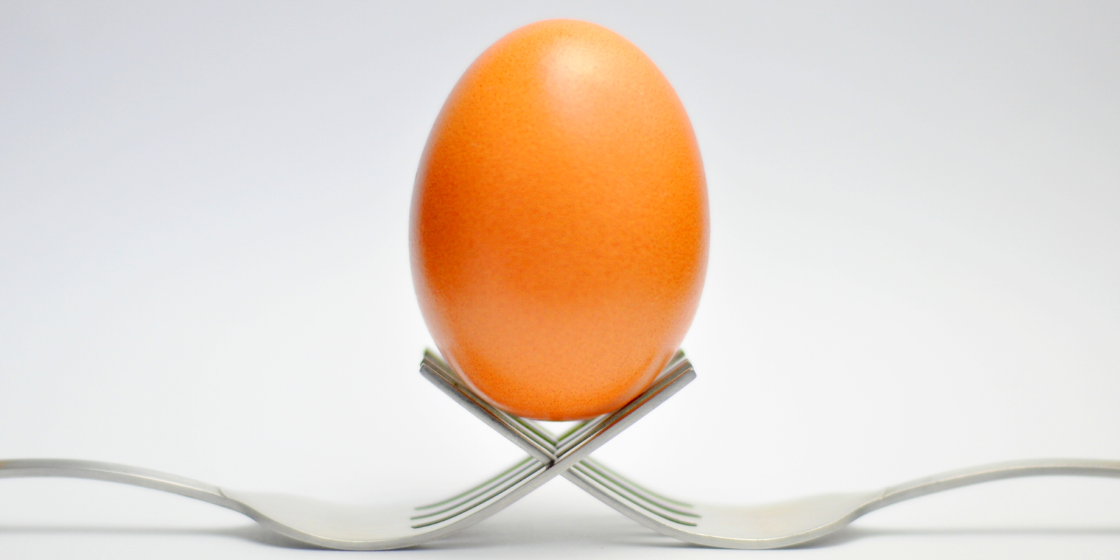 Egg balanced on intersecting forks