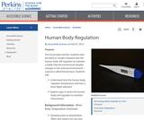 Human Body Regulation