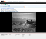 Benji Iguchi Driving Tractor In Field, Manzanar Relocation Center