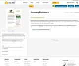 Accessing  Blackboard