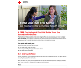 Mental Health Mini Guide from The Red Cross