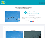 Animals: Migration