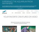 Animal Videos - Seattle Aquarium
