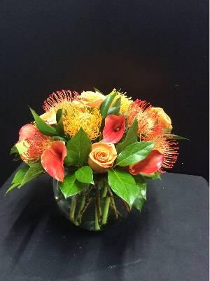 Miami Gardens Florist, Aventura, FL   Customer Flower Reviews