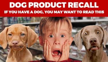 dog-treat-image2