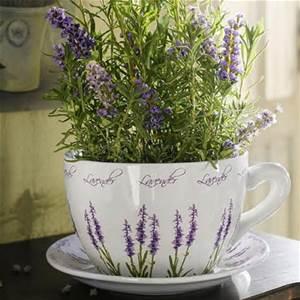 lavender plant mug