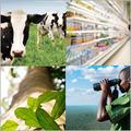 Carbon Offsets national blend image