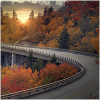 Carbon Offset Thanksgiving Travel