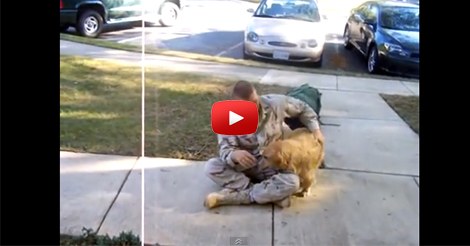 Seeing-my-dog-the-day-I-got-back-from-Afghanistan