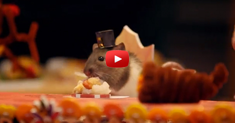 A-Tiny-Hamster-Thanksgiving