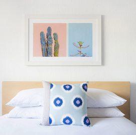 Saguaro Image