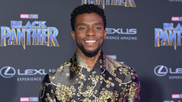 Fans petition Marvel to recast Chadwick Boseman's 'Black Panther' role to