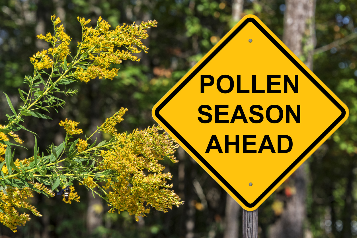 How climate change is making allergy season even worse