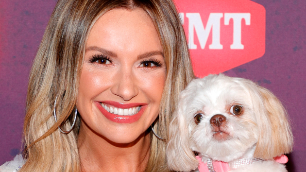 Carly Pearce's dog was glam at the CMT Awards, but Lindsay Ell's pooch caused a broken foot before the show