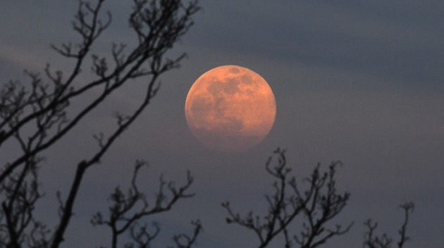 How to watch Thursday night's 'Strawberry Moon,' the last supermoon of 2021
