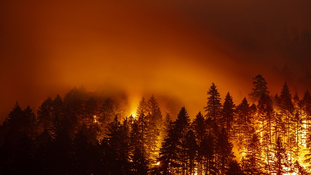 Dixie Fire, California's largest, forces evacuations amid a rapid spread