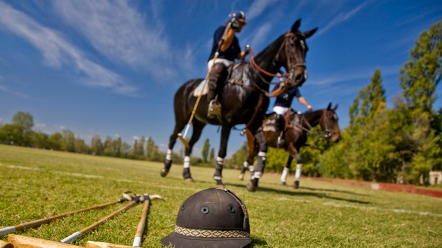Ride to the Olympics CEO on increase in Black polo players: 'We break barriers'
