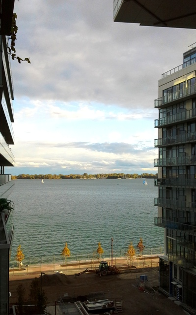 Apartments For Rent Queens Quay Toronto
