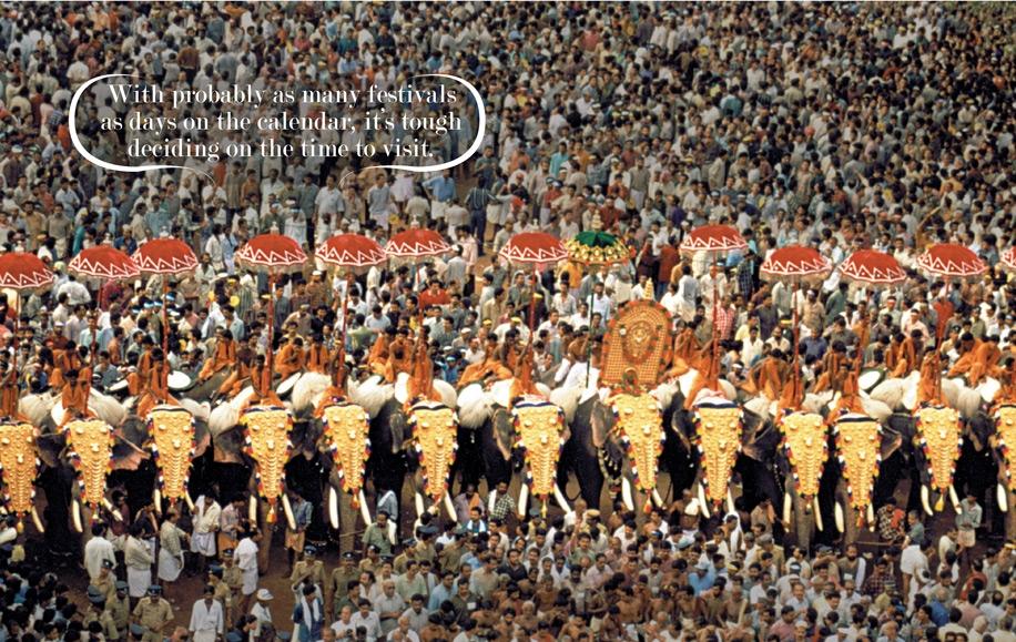 008 elephant festival