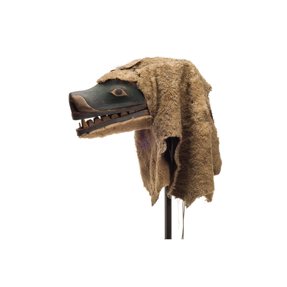 A Nanis or sea dog mask with long muzzle open mouth and sharp teeth, green paint surrounding eyes, sheep skin attached at back