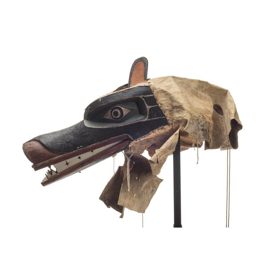 A Nan or bear mask with long black muzzle, red paint lips and snout, two rows of teeth, leather drape at back