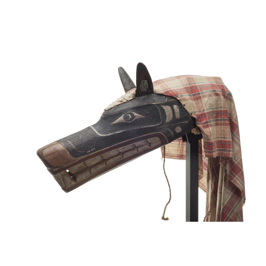 Xisiwe' or wolf mask, one of several with long snout and large teeth, painted red and black with plaid cotton head cover, prominent upright ears