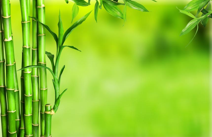 Bamboo flooring styles